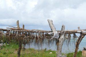 Rodrigues, le Sud & l'Ouest