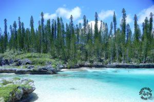 La nouvelle Calédonie, l'île des pins